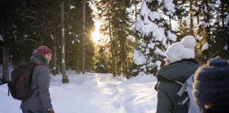 Im Skigebiet Vigiljoch im Meraner Land kann man auch wandern gehen. Quelle: MGM