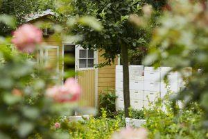 Der Bienenstock im Garten von Dr. Bee. Quelle: Bine Bellmann