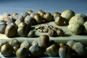 Gut für das Gehirn: Nüsse sind leckere Vitamin-B-Lieferanten. Quelle: Shutterstock.com