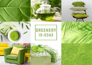 """""""Greenery"""" die neue Trendfarbe für das Jahr 2017. Quelle: Shutterstock.com"""