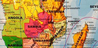 In Europa seit langem ausgerottet, grassiert die Pest heute wieder auf Madagaskar. Quelle: 59Plus