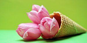 Der Frühling beginnt heute. Bringen Sie Ihren Körper zurück ins Gleichgewicht! Bildquelle: Pixabay.de