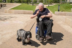 Für viele Senioren stellen ihre Hunde ein unersetzbarer Begleiter dar. Bildquelle: wernerkrueper.de
