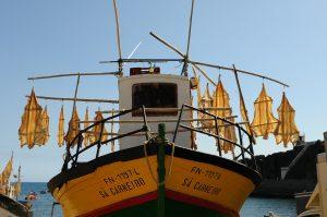Ein beliebtes und sehenswertes Ganzjahresreiseziel: Madeira. Bildquelle: Pixabay.de