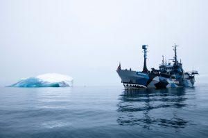 """Das Sea Sheperd Schiff """"Bob Barker"""" vor einem Eisberg. Quelle: Sea Sheperd"""
