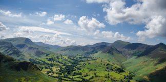 Die Klimaerwärmung ermöglicht den Weinbau mittlerweile selbst in den Hügeln von England und Wales. Bildquelle: pixabay.de