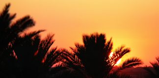 Idyllisch zieht sich Hamilton Road durch das Grenzgebiet zwischen dem Irak und Iran. Bildquelle: pixabay.de