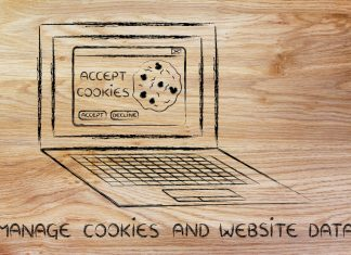 Unser Techniklexikon: Was sind Cookies? Bildquelle: shutterstock.com