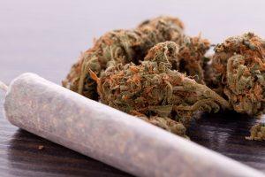 Cannabis wird sehr häufig in Form eines Joints konsumiert. Bildquelle: shutterstock.com