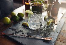 Gin Tonic ist zur Zeit oder mal wieder das absolute Modegetränk. Aber Gin kann auch mehr! Bildquelle: shutterstock.com