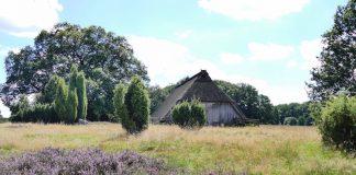 Die Heide. Ein Schafstall zwischen Wilsede und Totengrund. Bildquelle: Christiane Feill