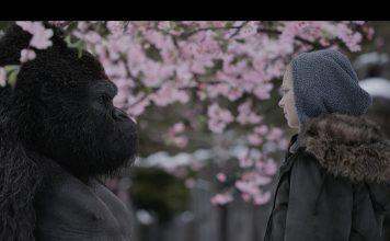 Planet der Affen: Wird es noch einmal Frieden geben? Quelle: © 2017 Twentieth Century Fox