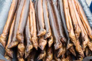 Der Aal - früher eine gänigige Deikatesse. Inzwischen ist der Aal jedoch vom Aussterben bedroht. Bildquelle: shutterstock.com