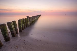 Unberührte Natur - Mecklenburg Vorpommern hat ausreichend davon zu bieten. Bildquelle: Pixabay.de
