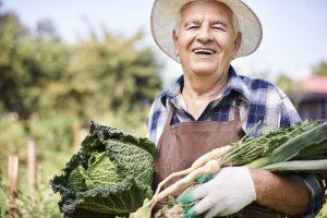 Dünger für das Gehirn? Kann Essen klüger machen? Bildquelle: shutterstock.com