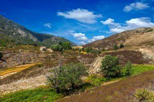 Auf kleinen Pfaden durch die Macchia ist der perfekte Einstieg in die Wanderwelt Korsikas. Bildquelle: shutterstock.com