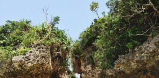 Okinawa ist die südlichste Präfektur Japans und ein Inselparadies das zum urlauben einlädt. Bildquelle: © Hayato Shin / Unsplash.com