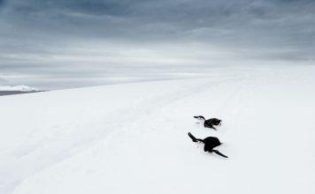 Der nächste Winter steht vor der Tür. Sind Sie mit ihrer Garderobe schon vorbereitet? Bildquelle: Photo by lucas huffman on Unsplash
