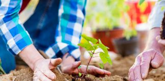 Der Garten ist für viele von uns vor allem im Alter wahre Medizin. Bildquelle: shutterstock.com