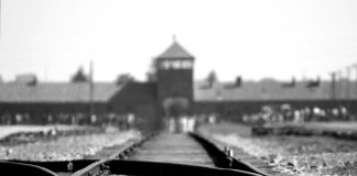 Jährlich wird am 27. Januar den Opfern des Holocaust Gedacht. Bildquelle: pixabay.de