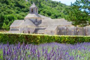 Die Provence entdecken und kulinarisch voll auf die kosten kommen, das ist Frankreich. Bildquelle: Pixabay.de