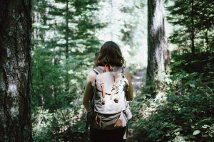 Den Tag in der Natur genießen und dabei gute Gespräche führen, das wünscht sich Marlis aus Leipzig. Bildquelle: Jake Melara on Unsplash.com