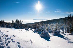 Haben Sie Lust auf Winter und wollen nicht weit reisen? Dann ist der Harz für Sie vielleicht eine interessante Alternative. Bildquelle: shutterstock.com