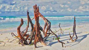 Ein Besuch der wunderschönen Karibikstrände Kuba´s ist natürlich ein absolutes MUSS. Bildquelle: Pixabay.de