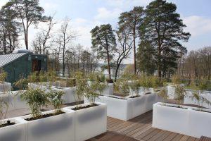 Die Dachterrasse der Panoramasauna bietet Ihnen im Sommer wie im Winter einen tollen Ausblick. Bildquelle: BadSaarowKurGmbH