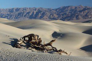 Hitze, Wüste und Sand soweit das Auge reicht. Bildquelle: Pixabay.de