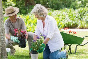 Garten 59plus: Wie der Garten auch im Alter noch viel Spaß macht und weniger Arbeit verursacht. Bildquelle: shutterstock.com