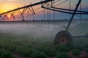 Die Landwirtschaft hat einen enormen Fortschritt durch die Menschen in einem Kibbuz erfahren. Bildquelle: shutterstock.com