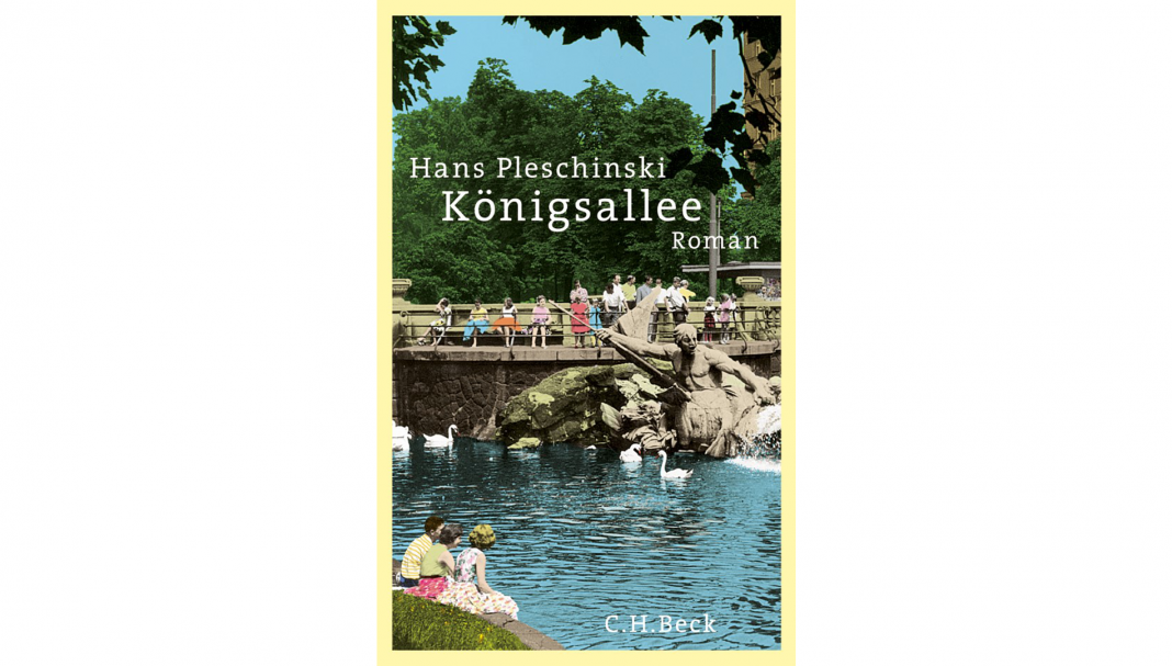 In Hans Pleschinskis