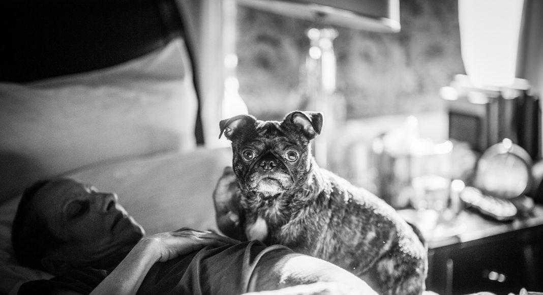 In den letzten Tagen wehrt sich Laurel gegen jede Berührung, es fällt ihr schwer. Nur Moses, der 4-jährige Terrier darf zu ihr. Er schaut ihr stundenlang in die Augen, kuschelt sich an sie und wird ganz beiläufig zum Therapie-Hund für die Sterbende. Foto: © Nancy Borowick