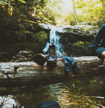 Der Schluchtensteig gehört zu den Top Trails in Deutschland. Bildquelle: © Jake Ingle/Unsplash.com