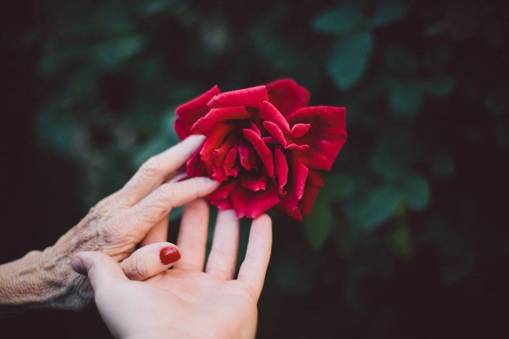 Einen Sterbenden zu begleiten, ist eine nachhaltig verändernde Erfahrung. Bildquelle: ©Jake Thacker / Unsplash.com