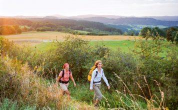 Auf dem 313 km langen Eifelsteig kann man Moore und Vulkanlandschaften entdecken. Bildquelle: Dominik Ketz/Rheinland-Pfalz Tourismus GmbH