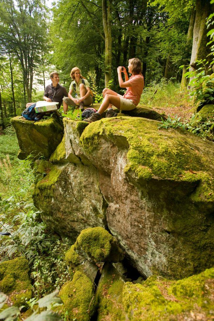 Der Eifelsteig durchquert die Bundesländer Nordrhein-Westfalen und Rheinland-Pfalz. Bildquelle: Dominik Ketz/Rheinland Pfalz Tourismus GmbH