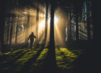 Raus an die Luft und möglichst jeden Sonnenstrahl einfangen. Das ist ein wertvolles Rezept gegen eine Winterdepression. Bildquelle: © Kiwihug / Unsplash.com