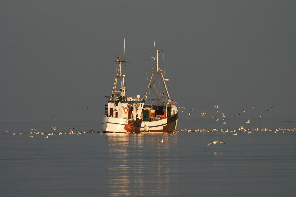 Ein zum Glück immer noch typisches Bild an der Ostsee - Fischkutter die den Fang einfahren. Bildquelle: Pixabay.de