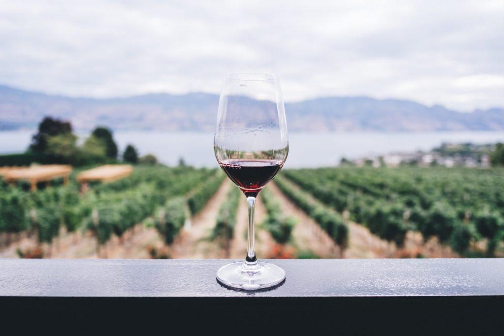 Rotwein hat in der Regel einen höheren Tanningehalt als Weißwein. Bildquelle: © Kym Ellis / Unsplash.com