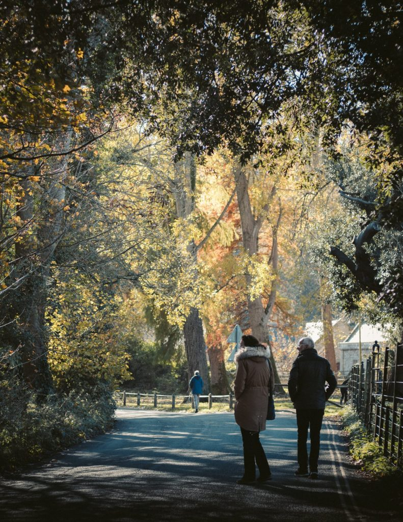Marthe versucht so gut es geht jeden Tag spazieren zu gehen und die frische Luft zu genießen. Bildquelle: © James Francis / Unsplash.com