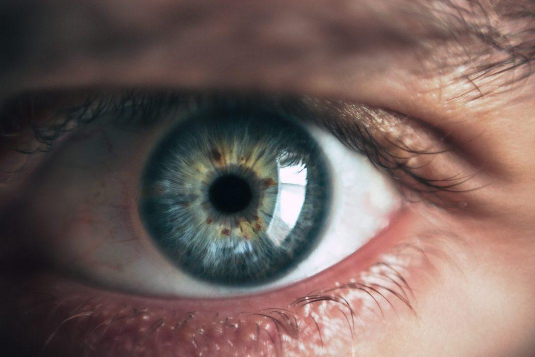Viele Augenleiden kann man durch rechtzeitiges Erkennen deutlich früher heilen oder behandeln. Bildquelle: © Victor Freitas / Unsplash.com