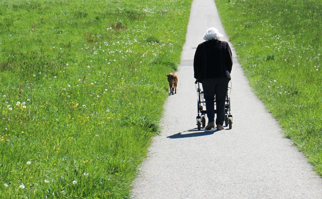 Gesellschaftlich leider immer noch nicht vollständig anerkannt, ist der Rollator ein Stück Freiheit für diejenigen, deren Mobilität bereits eingeschränkt ist. Bildquelle: © Pixabay.com