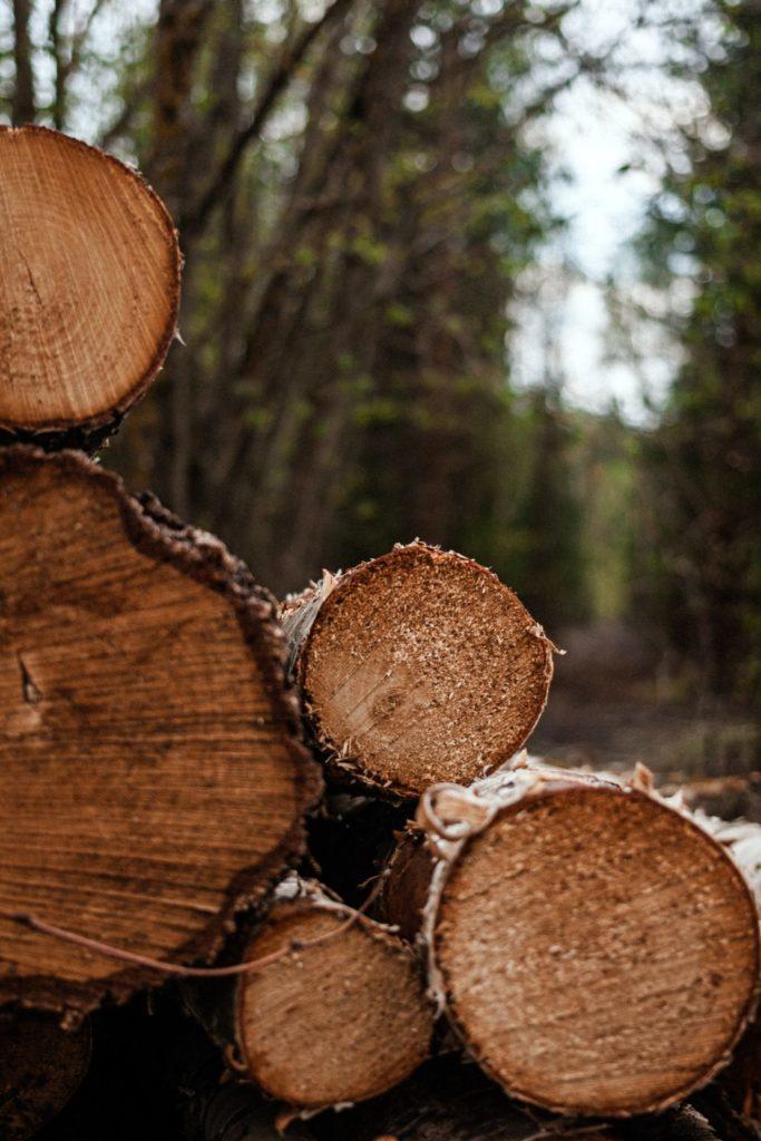 Nachhaltigkeit und Herkunft spielen für uns als Verbraucher eine immer größere Rolle. Bildquelle: © Irena Carpaccio / Unsplash.com