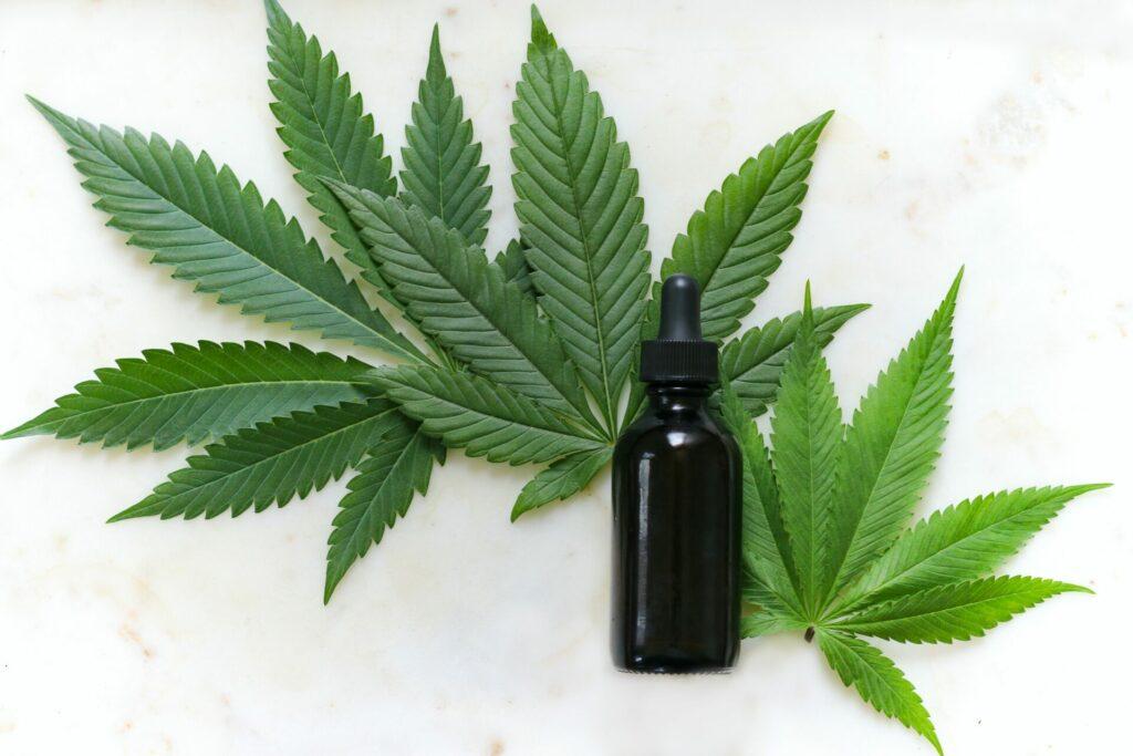 Der natürliche Wirkstoff Cannabidiol (CBD) ist ein sehr vielseitiges Naturheilmittel. Bildquelle: © Kimzy Nanney / Unsplash.com