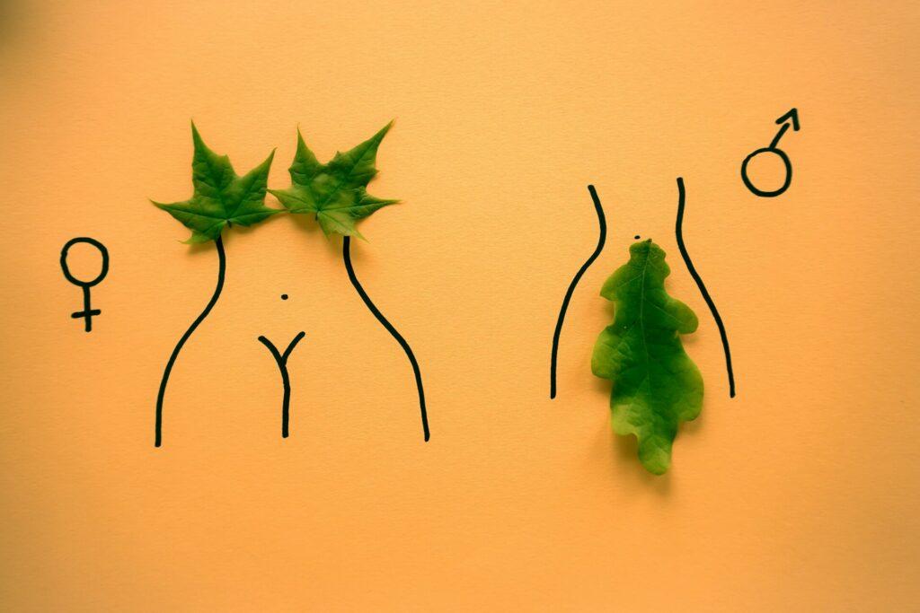Noch viel zu selten offen thematisiert, aber die Sexualität spielt natürlich auch in der Generation 59plus eine wichtige Rolle. Bildquelle: © Dainis Graveris / Unsplash.com