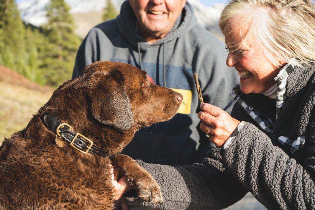 Zusammen ist man weniger alt. Nicht nur eine These, sondern der gelebte Alltag des Autoren Lorenz Wagner. Bildquelle: © Chewy / Unsplash.com
