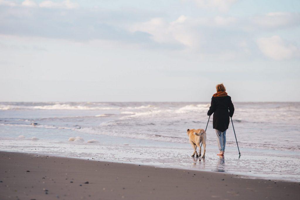 Ob im Urlaub oder beim täglichen Fitnessprogramm - der Hund ist ein toller Begleiter. Bildquelle: © Joppe Spaa / Unsplash.com